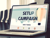 Political and Issue Campaign/Project Management
